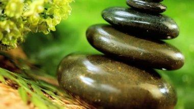 Natural Balanced Stones & Aromatherapy Oils — Stock Video