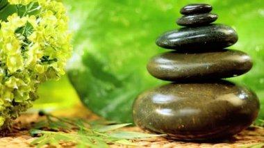 Black Spa Stones, Cleansing Salts & Green Leaves — Stock Video