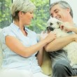 Mature Couple Petting their Dog — Vídeo de stock