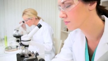 Young Research Assistants in Medical Laboratory — Stock Video