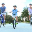 Royalty-Free Stock 矢量图片: Family Healthy Cycling Fitness