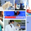 Montage of Female Medical and Scientific Researchers — Stock Video