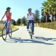 Stock Video: Female Friends Cycling Together