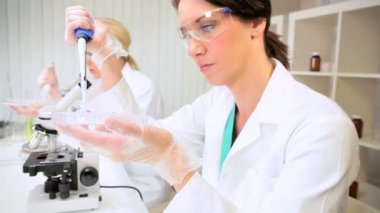 Female Research Assistants in Hospital Laboratory — Stock Video