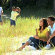 African American Family Enjoying Time Outdoors — Stock Video #23411428