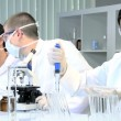 Research Assistants Working in Medical Laboratory — Stock Video