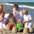 Children and Parents Playing in the Sand — Stockvideo