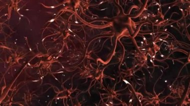 CG Graphic of Neuron Cells — Stock Video