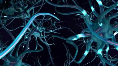 CG Digital Graphic of Network of Neuron Cells — Stock Video
