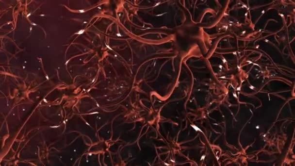 CG Graphic of Neuron Cells — Vidéo