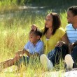 Stock Video: Young Ethnic Family Enjoying the Park