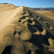 Stock Video: Sand Dunes Waterless Environment