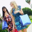 Beautiful Girls on a Shopping Day Rodeo Drive — Stock Video