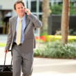 Businessman on Smart Phone with Travel Luggage — Stock Video
