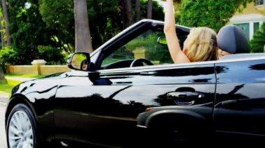 novias con su coche de lujo — Vídeo de stock #23702965
