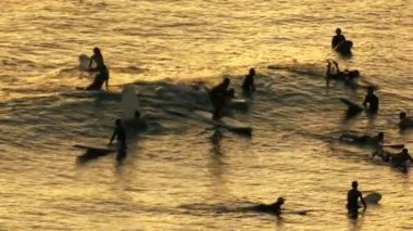 Ocean Surfers Silhouette — Stock Video