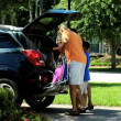 Boy helping parents pack car — Stock Video #49374847