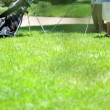 Father teaching son playing golf — Stock Video #49377503