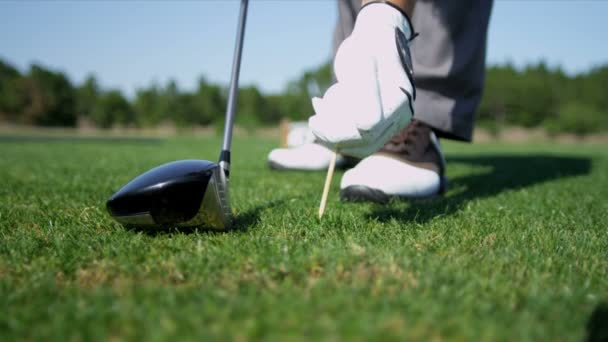 Golfista colocando la pelota de golf en tee — Vídeo de stock