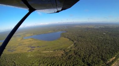 Aerial view of tundra marshland with forestation  Alaskan Wilderness, Alaska, USA — Stock Video