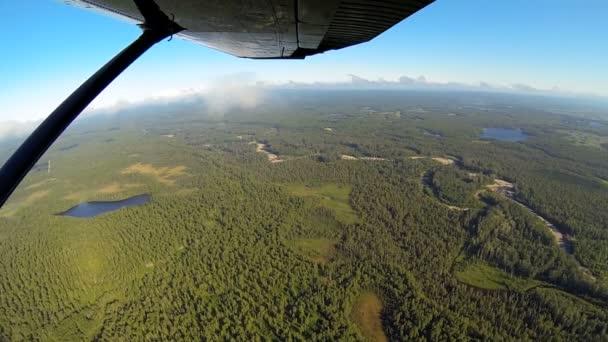 Vista aérea de aviones ligeros forestación desierto tundra de alaska, Estados Unidos — Vídeo de stock