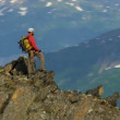 Climber at remote wilderness Mountain Peak — Stock Video #49593847