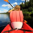 Female kayaking enjoying — Vídeo stock #50147513