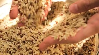 Hands running through dry grains — Stock Video