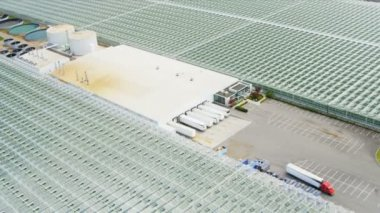 Aerial view industrial agricultural greenhouses, Vancouver — Stock Video