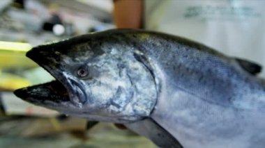 海三文鱼矛鱼市场西雅图,美国 — 图库视频影像