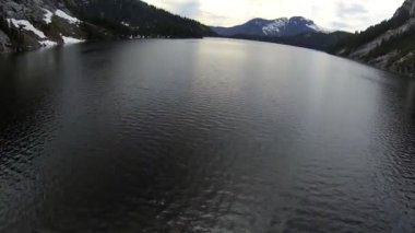 Aerial view coniferous forest mountain lake, Canada — Stock Video