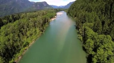 Aerial view of conifer wilderness river remote area, USA — Stock Video