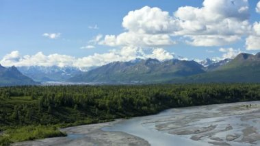Denali State Park Wilderness area — 图库视频影像