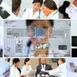 CG video montage Multi ethnic medical research hospital — Stock Video #50632149