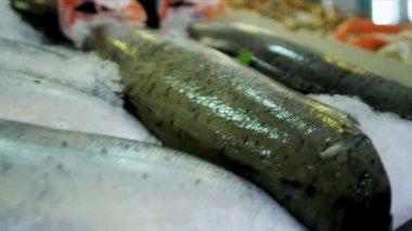 Sea crab Pikes Fish Market  Seattle, USA — Vídeo Stock