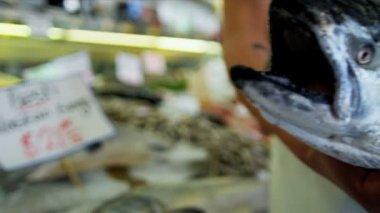 Sea salmon Pikes Fish Market  Seattle, USA — Stock Video