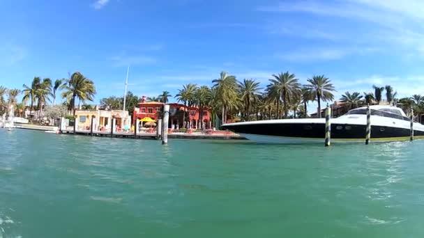 Motor yachts amarrés à miami — Vidéo