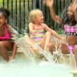 Friends playing in swimming pool — Stock Video #50943801