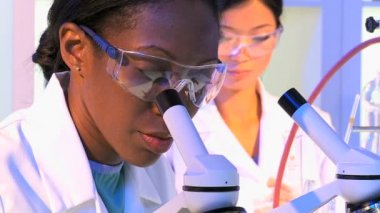 Pharmaceutical researchers using laboratory equipment — Stock Video