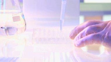 Laboratory technician conducting research experiments — Stock Video