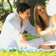 Young couple playing with baby in the park — Stock Video #51657773
