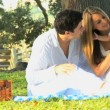 Young couple playing with baby in the park — Stock Video #51658649