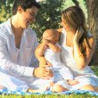 Young couple playing with baby in the park — Stock Video #51659219