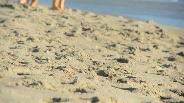 Attractive Couple Fun Enjoying Outdoor Beach Lifestyle — Stock Video
