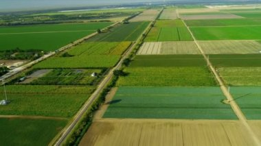 Aerial view agricultural farming land Southern Florida — Vídeo Stock