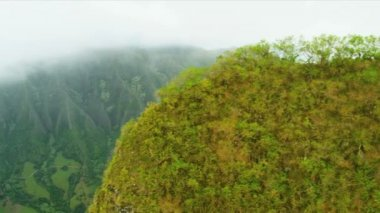Aerial landscape view ridges of volcanic lava, Hawaii — Stock Video