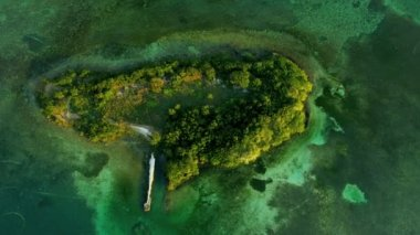 Aerial view of small sub tropical Island in Florida — Stock Video