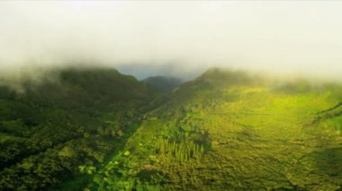 Aerial view of rain clouds  volcanic cliffs — Stock Video