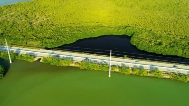 Highway crossing marshland Key Largo — Stock Video