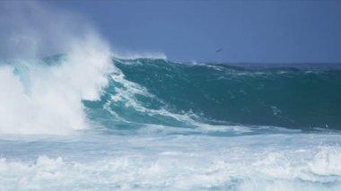 Powerful Waves Pounding Dangerous Rocks — ストックビデオ